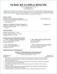 Example Summary Resume Printable Summary Resume Examples Printable ...