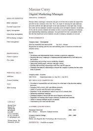 Digital Marketing Sample Resume And Excellent Digital Marketing