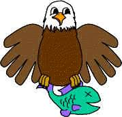 bald eagle template bald eagle paper craft