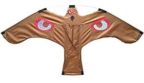Buy <b>Bird</b> Scarer -Flying <b>Hawk Kite</b> for Garden Scarecrow Yard and ...