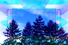 Winter Tree Template Download Free Picture Winter Tree Template On Cc By License Free