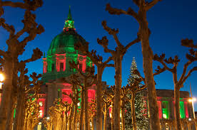 Fake Versus Real Christmas Trees The Needling Never Ends  San Christmas Tree In San Francisco