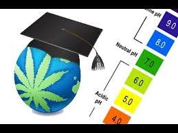 Cannabis Ph Chart Ph Range Guide For Cannabis Soil Hydroponics Youtube