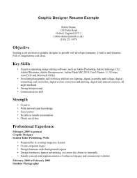 Excellent Graphic Designer Resume Template With Key Skills And