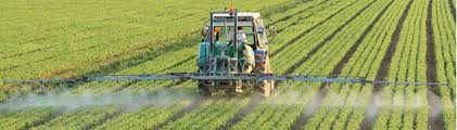 New Study Highlights Pesticide Application as Potential Source of Noroviruses in Fresh Food Supply Chains