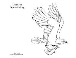 Charley Harper Coloring Book Of Birds Plus Eagle Coloring Book And