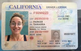 Immigrants Driver's – License Online California Buy