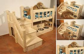 loft-dog-bed-praktic-ideas