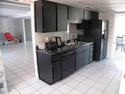 Dark Cabinet Kitchens With Black Appliances Design ...
