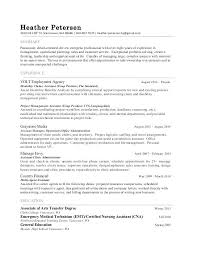 detail oriented examples experience synonym resume data analyst sample experience of data