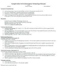 Software Developer Sample Resume Captivating Sample Resume Entry
