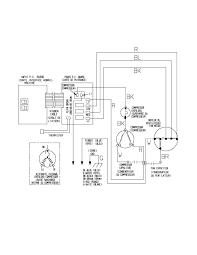 rheem capacitor wiring diagram cabinetdentaireertab com