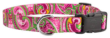 Patterned Dog Collars Classy Buy 48 Deluxe Dog Collars Online