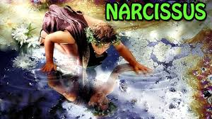 Image result for narcissus in mythology