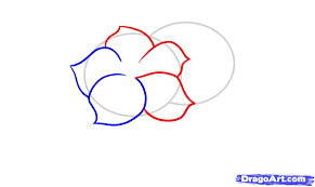 Small Picture Cool Simple Design Terrific 20 Cool Easy Flower Designs To Draw