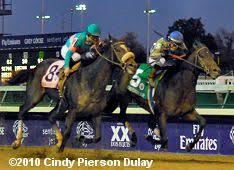Breeders Cup Charts 2010 2010 Breeders Cup Classic Results