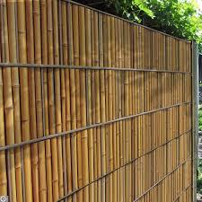 Bambus Sichtschutz Wohndesign