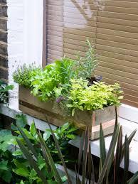 Kitchen Window Herb Garden Make A Window Box Of Herbs And Lettuce Hgtv