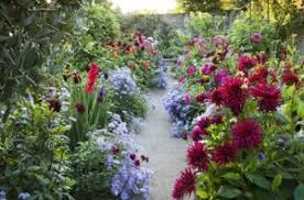 Small Picture whats in the magazine garden design growing with plants the