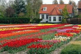 flowers garden. House Flower Garden Home Ideas Beautiful Flowers