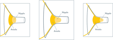 Breast Shield Sizing How To Get The Best Fit Medela