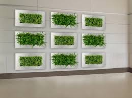 Wall Planters Ikea Articles With Indoor Wall Garden Ideas Tag Indoor Wall Planter