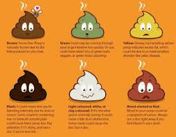 Childrens Stool Chart Kids Gut Health What Your Childs Poop Reveals About Their