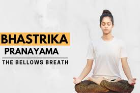 Bhastrika Pranayama(the bellows breath)