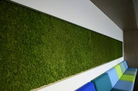 Greenmood Design Green Wall By Greenmood Brings You A Green Space Full Of