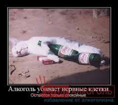 Реферат обж алкоголизм Избавление от алкоголизма Реферат обж алкоголизм фото 25