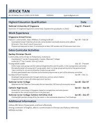 Resume Application Cv Template Resume Examples
