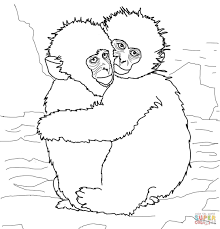 Coloring Pages Of Monkeys Funnyhubnet