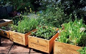 Small Picture Eco friendly design ideas for your garden Telegraph