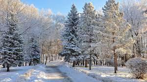 42+ Beautiful Winter Wonderland Wallpaper