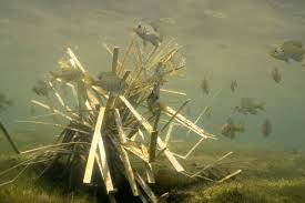 Pvc Fish Structure Designs Artificial Fish Habitat Or Fish Attractors Which Do The