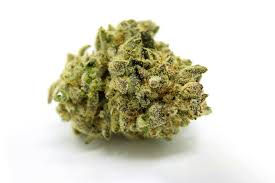Animal Mints Strain - Full info & Reviews | AskGrowers