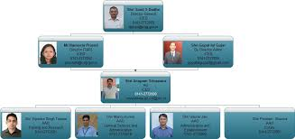 Cag Organisation Chart Org Iced