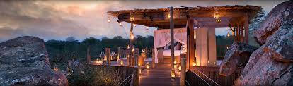 Treehouse Hotel Africa