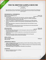 Write My Essay Service The Ring Of Fire Resume Template Truck