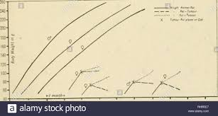 Iu To Cc Conversion Chart 1917 The Stock Photos 1917 The Stock Images Page 177 Alamy