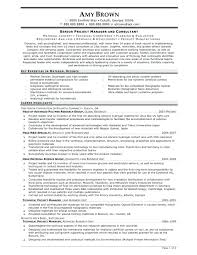 Crm Project Manager Resume Resume It Project Manager Resume Examples 23