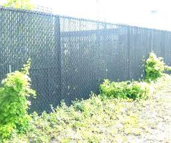 chain link fence privacy screen. Fence Screens Chain Link Privacy Screen Ideas Medium Size Of Frantic Image Fencescreen