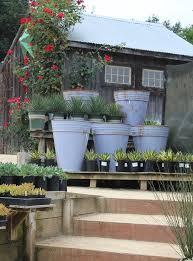 cottage gardens petaluma