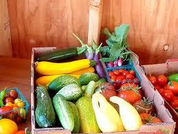 Presentation Foods Free Local Food Markets Presentation To Discuss Community