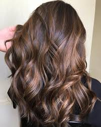 Light Cherry Brown Hair 60 Hairstyles Featuring Dark Brown Hair With Highlights In