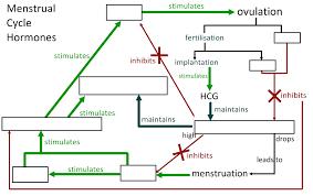 6 6 Reproduction Core I Biology