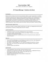 Download Solution Architect Resume