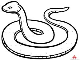 snake clipart black and white. Brilliant Black Black And White Clip Art Guru Tags For Snake Clipart And White