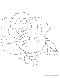 roses coloring page coloring pages rose printable rose coloring free printable rose coloring pages for s