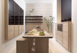 Delightful Modern Kitchen Cabinet Doors Re Decorating Ideas Gallery